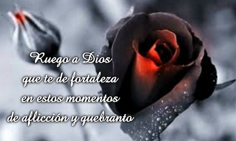 Imagenes De Luto Con Rosas Negras Con Frases Tristes