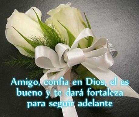 Imágenes Con Mensajes De Condolencias Cristianos Frases De Luto