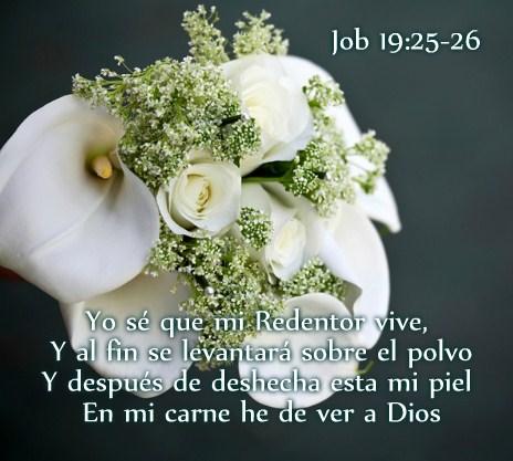imágenes con mensajes cristianos de condolencias