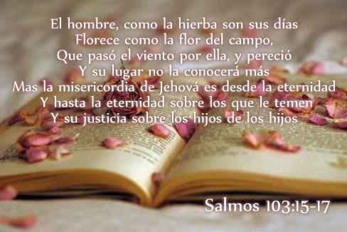 Tarjetas De Pesame Cristianas Imagenes De Condolencias Frases De Luto