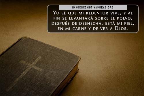 Frases de luto