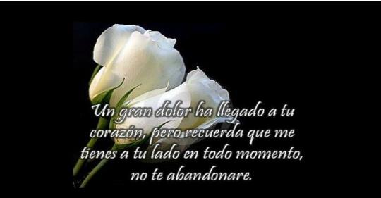 Imágenes de luto con rosas blancas