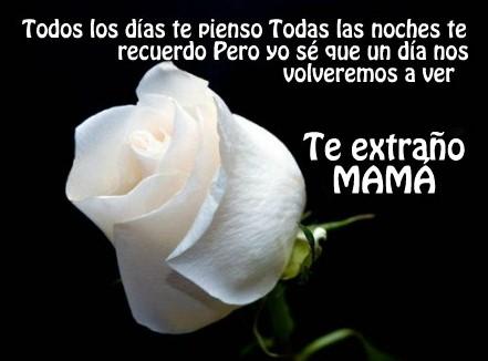 Frases de luto de una madre