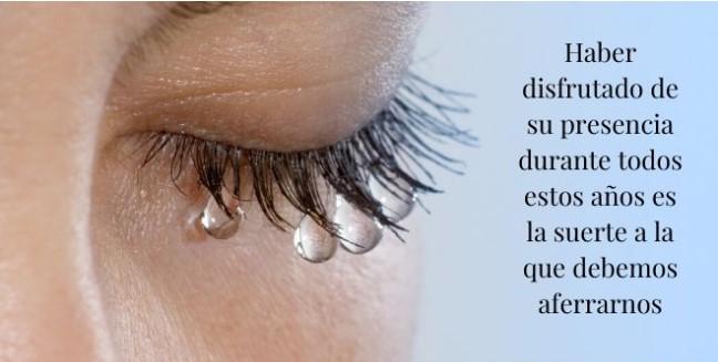 Frases de luto y tristeza