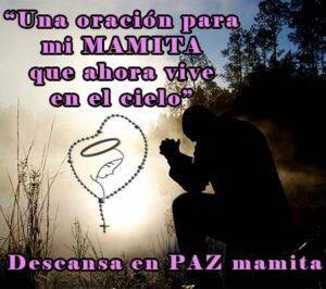 Mamita descansa en paz