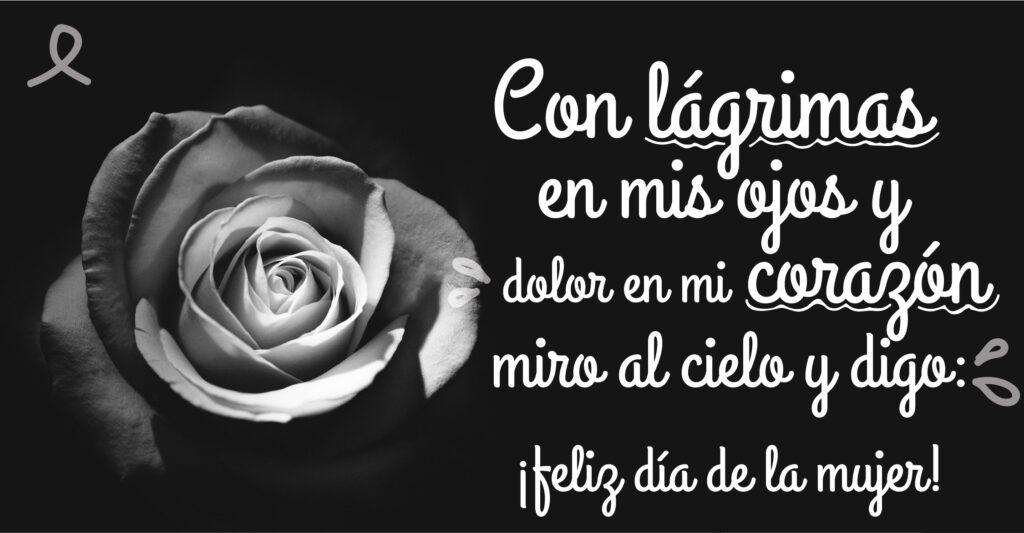 Con lágrimas en mis ojos y dolor en mi corazón miro al cielo y digo ¡feliz día de la mujer!
