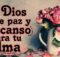 Que Dios te de paz y descanso para tu alma
